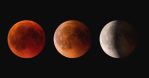 eclipses 2019